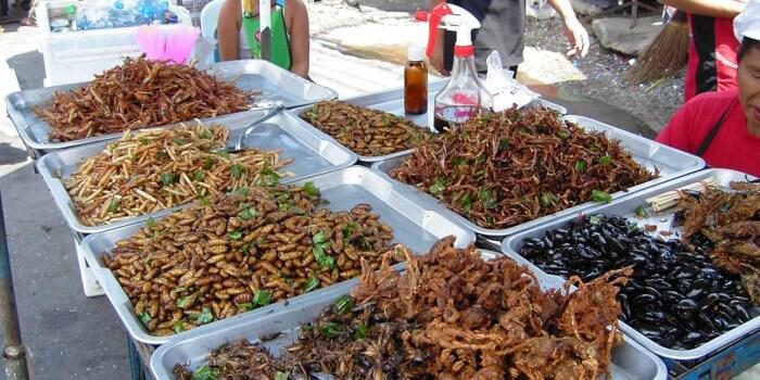 Insekter som mad