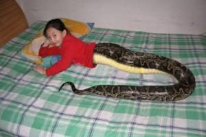 slangepige thailand