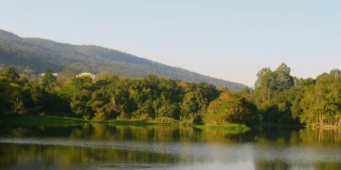 Tag en tur ud til søen ved Chiang Mai Universitet