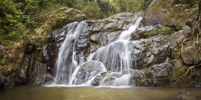 Kom på opdagelse i Nordthailand