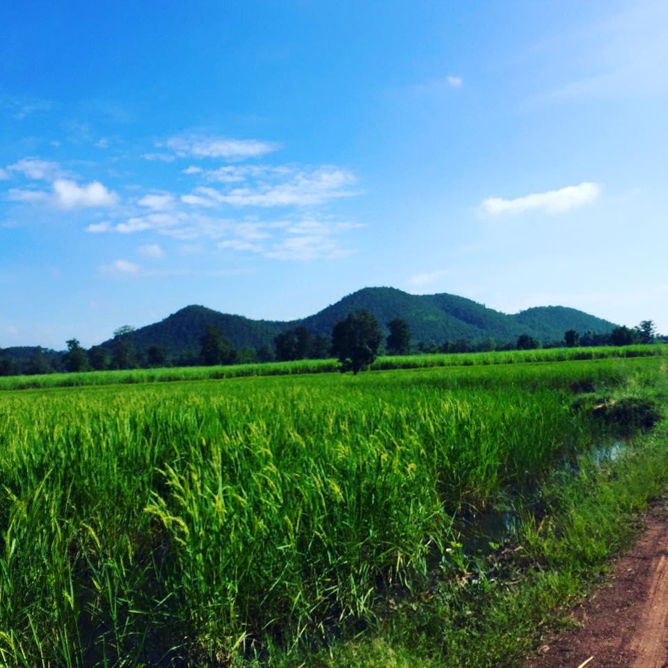 6 ting jeg kommer tilbage til Chiang Mai for