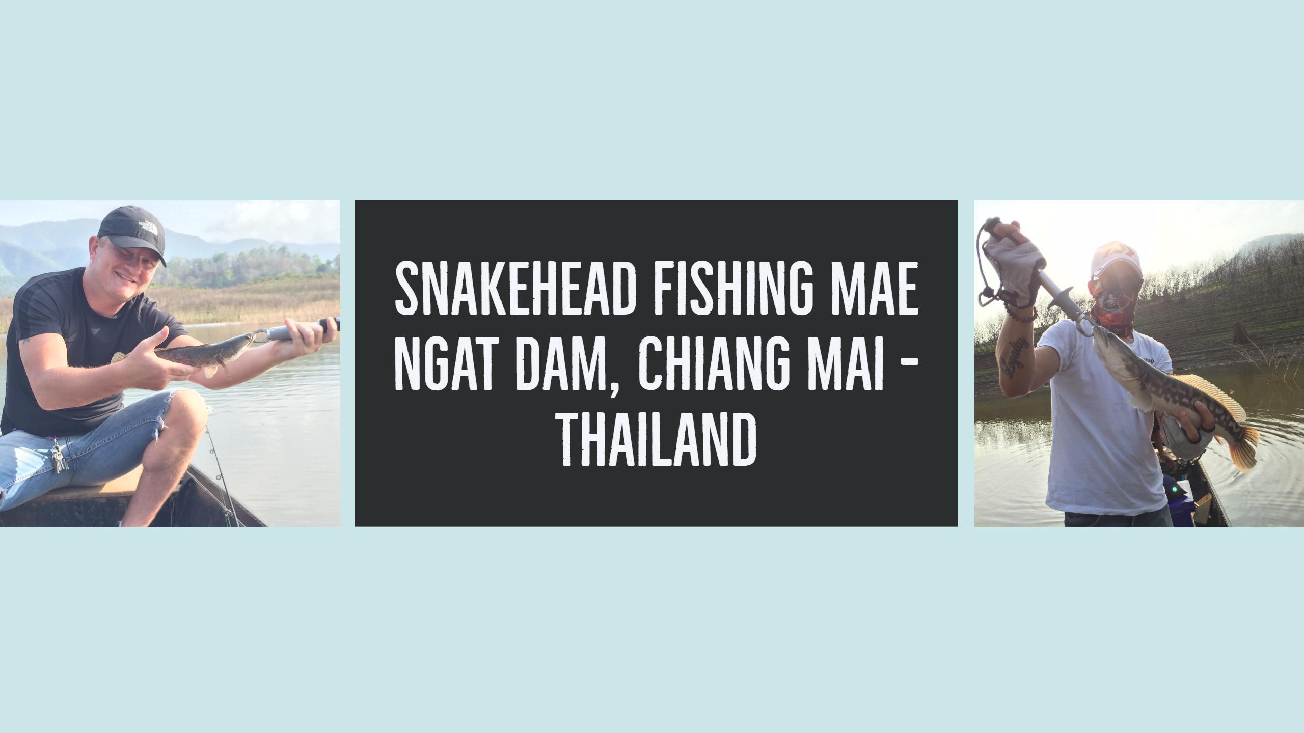 Snakehead fiskeri i Mae Ngat Dam